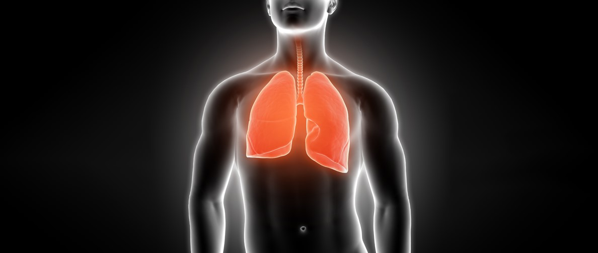 types-of-lung-cancer.jpg